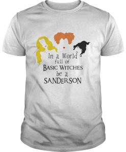 Hocus Pocus in a world full of basic witches be a Sanderson shirt