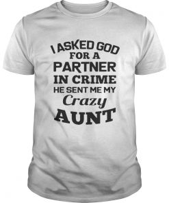 I asked God for a partner in crime he sent me my crazy aunt shirt