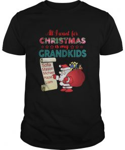 Guys All I want for Christmas is my Grandkids shirt and sweater