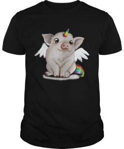 Guys Rainbow Pig unicorn shirt