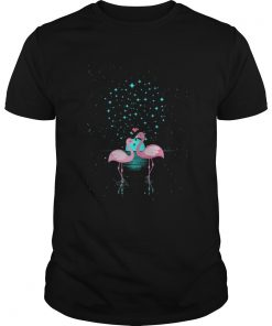 Flamingo Under The Night Stars Guys