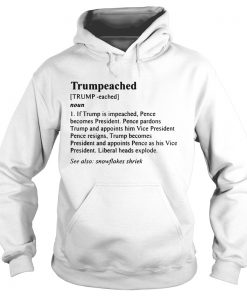 The Definition Trumpeached hoodie