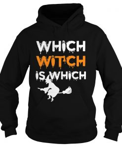 The Which Witch Is Which Funny Halloween English Teacher hoodie