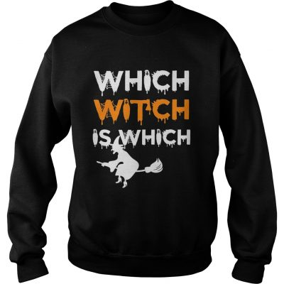The Which Witch Is Which Funny Halloween English Teacher sweatshirt
