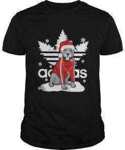 Christmas Pit Bull Santa Adidas Guys