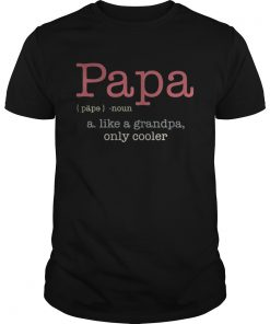 Guys Papa a like a grandpa only cooler shirt