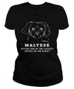 Ladies Tee Maltese Dog Of The Coolest shirt