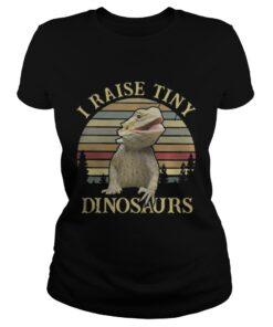 Ladies Tee Sunset I raise tiny dinosaurs