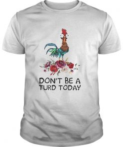 Guys Hei Hei dont be a turd today shirt