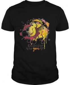 Guys Lion King Remember who you are shirt