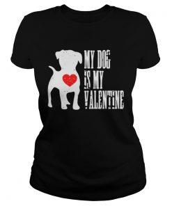 Ladies Tee My dog is my valentine shirt