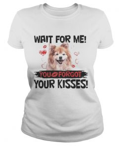 Cute Pomeranian Wait For Me You Forgot Your Kisses ladies tee