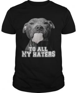 Guys Pitbull to all my haters shirt