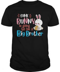 Guys Some Bunny Is Going To Be A Big Brother Easter Tshirt