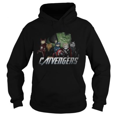 Marvel Catvengers avengers hoodie