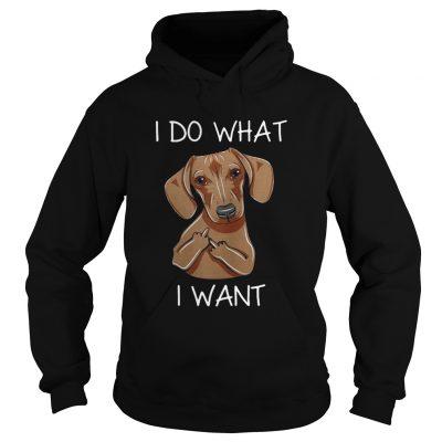 Dachshund I do what I want hoodie