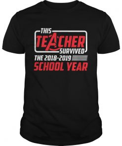 Guys Avengers this teacher survived the 2018 2019 school year shirt