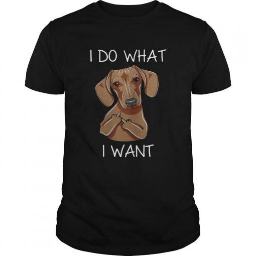 Guys Dachshund I do what I want shirt