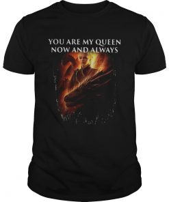Guys Mother of dragon you are my queen now and always shirt