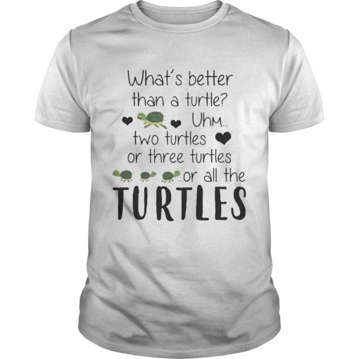Guys Whats Better Than A Turtle Uhm Two Turtles Or Three Turtles Or All The Turtles shirt