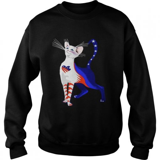 Independence Day Cat Flag America Sweatshirt