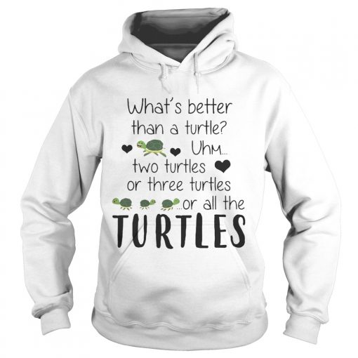 Whats Better Than A Turtle Uhm Two Turtles Or Three Turtles Or All The Turtles hoodie