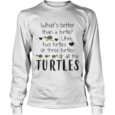 Whats Better Than A Turtle Uhm Two Turtles Or Three Turtles Or All The Turtles longsleeve tee