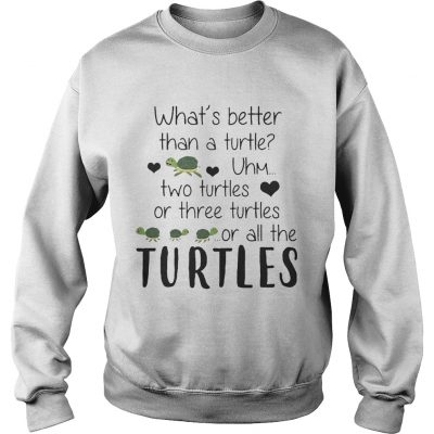 Whats Better Than A Turtle Uhm Two Turtles Or Three Turtles Or All The Turtles sweatshirt