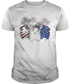 Fireworks Guinea Pigs 4th of July independence day American flag  Unisex