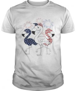 Flamingo 4th of July independence day American flag fireworks  Unisex