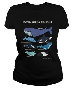 Future Marine Biologist Types of Whales and Dolphins Whale Let It Be Nature  Classic Ladies