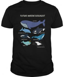 Future Marine Biologist Types of Whales and Dolphins Whale Let It Be Nature  Unisex