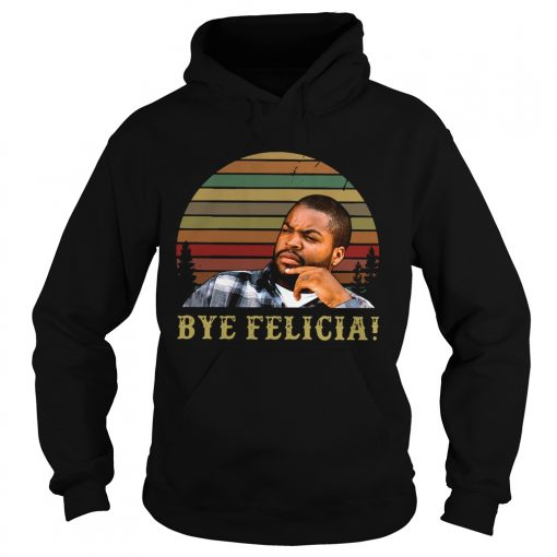 Retro Sunset Ice Cube Bye Felicia  Hoodie