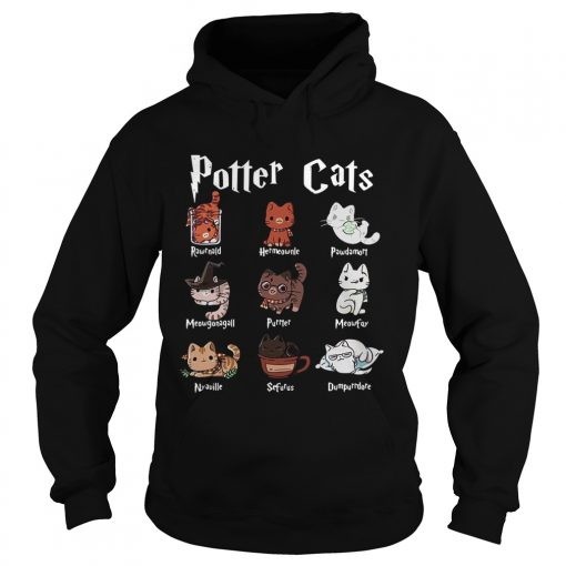 Harry Potter cats  Hoodie