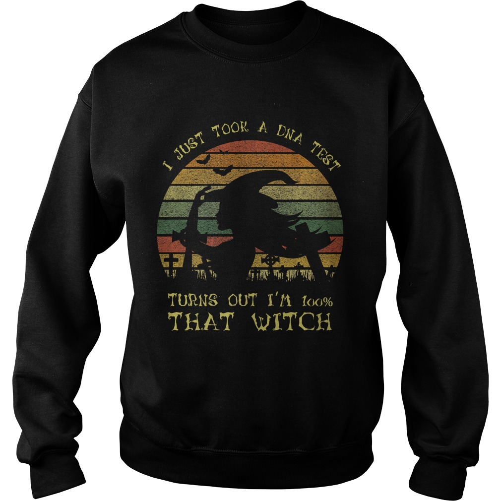 I Just Took A Dna Test Turns Out Im 100 Percent That WitchPremium TShirt Sweatshirt
