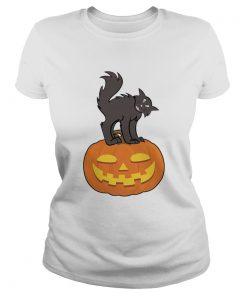 Black Cat On Pumpkin Funny Cat Lover TShirt Classic Ladies