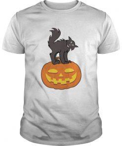 Black Cat On Pumpkin Funny Cat Lover TShirt Unisex