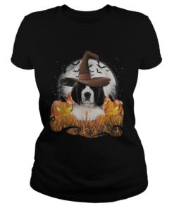 Cute Saint Bernard dog witch on Halloween pumpkin  Classic Ladies