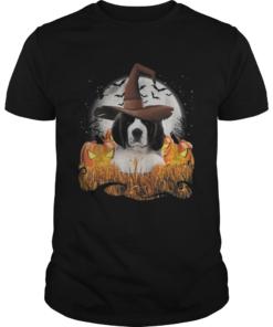 Cute Saint Bernard dog witch on Halloween pumpkin  Unisex