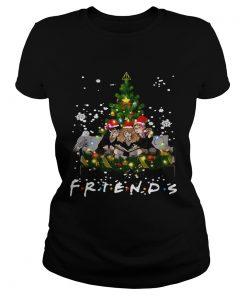 Friends Harry Potter Hermione Ron Christmas  Classic Ladies