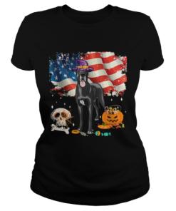 Great dane Dog Halloween Costume Gift Flag America TShirt Classic Ladies