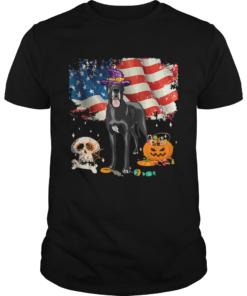 Great dane Dog Halloween Costume Gift Flag America TShirt Unisex