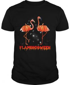 Halloween Custome Flamingo Flamingween pumpkin  Unisex