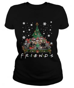 Harry Potter Hermione And Ron Weasley Christmas Tree style Friends tv show  Classic Ladies