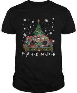 Harry Potter Hermione And Ron Weasley Christmas Tree style Friends tv show  Unisex