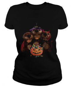Otter witch and Pumpkin Halloween  Classic Ladies