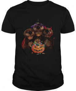 Otter witch and Pumpkin Halloween  Unisex
