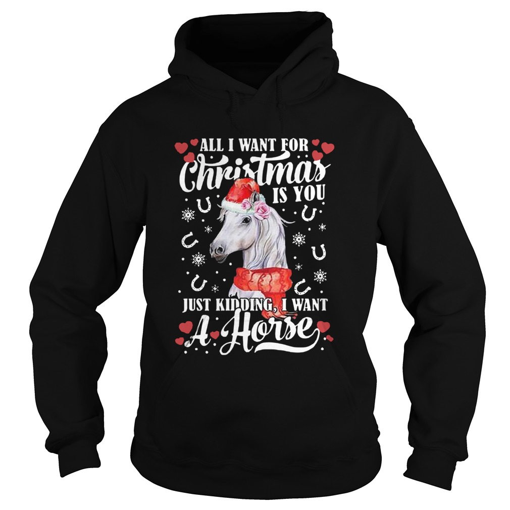 All I Want For Christmas Is You Just Kidding I Want A Horse Hoodie
