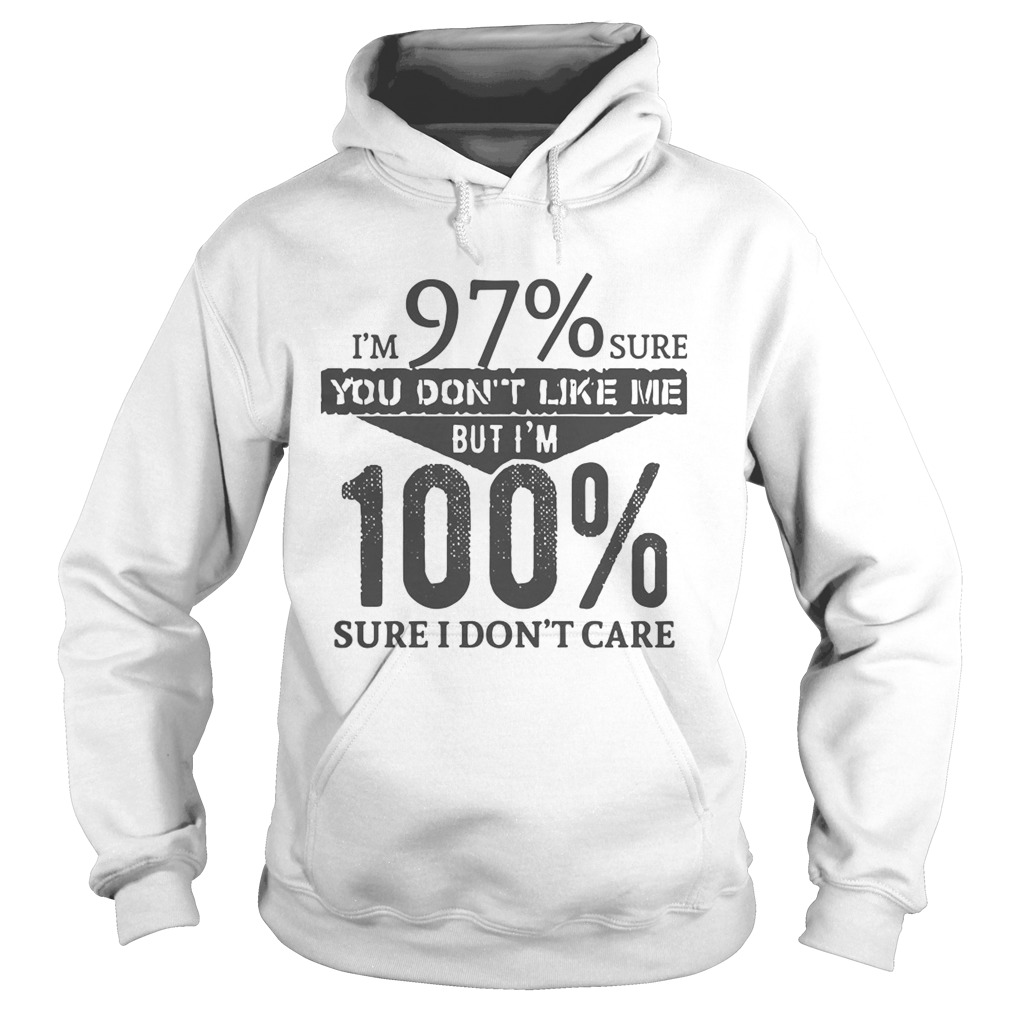 Im 97 Sure You Dont Like Me But Im 100 Sure I Dont Care Hoodie