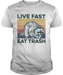 Raccoon Life Fast Eat Trash Vintage  Unisex